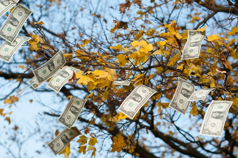 We SAID: Autumn Money Matters